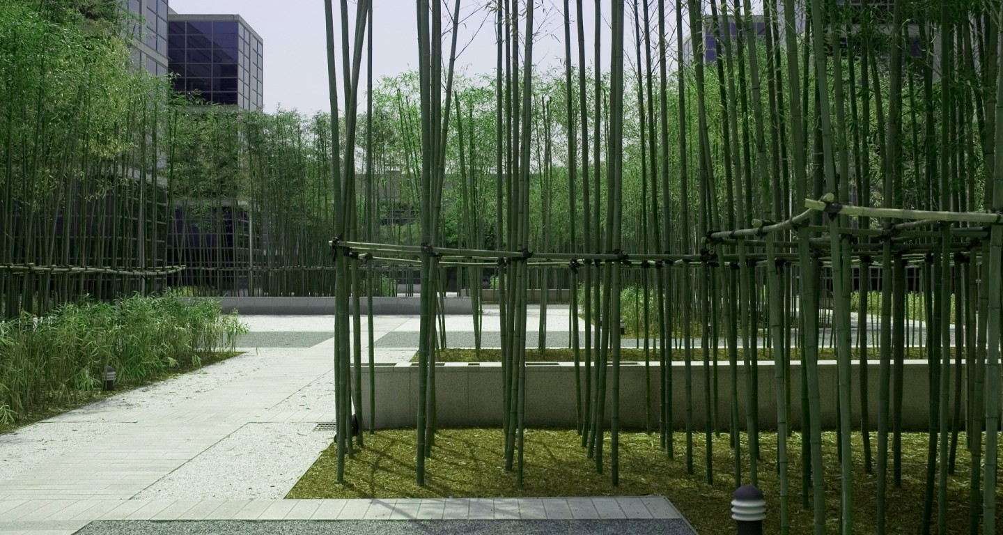 bamboo garden lg headquarters mikyoung kim design landscape architecture urban planning site art - Garden Design Using Bamboo