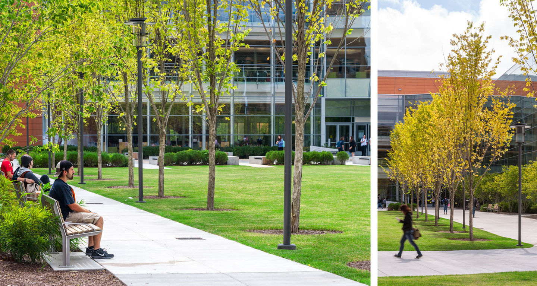 Salem State University: Learning Commons | Mikyoung Kim ...