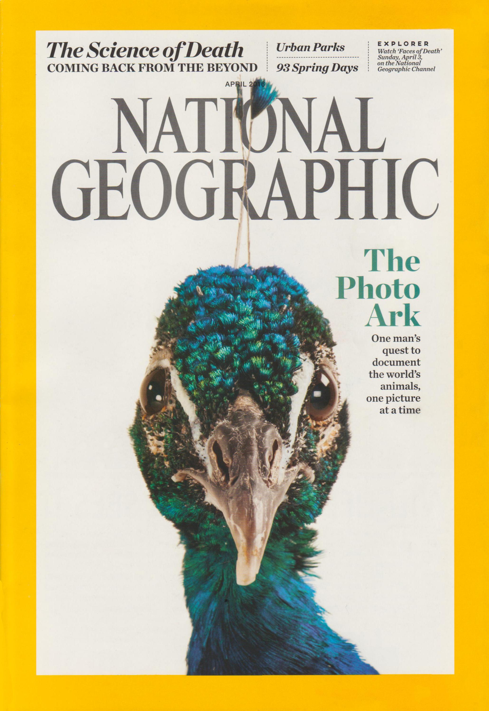 NatGea Cover 2016